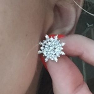 Jewelry - NWOT Sparkly Silver Snowflake Earrings